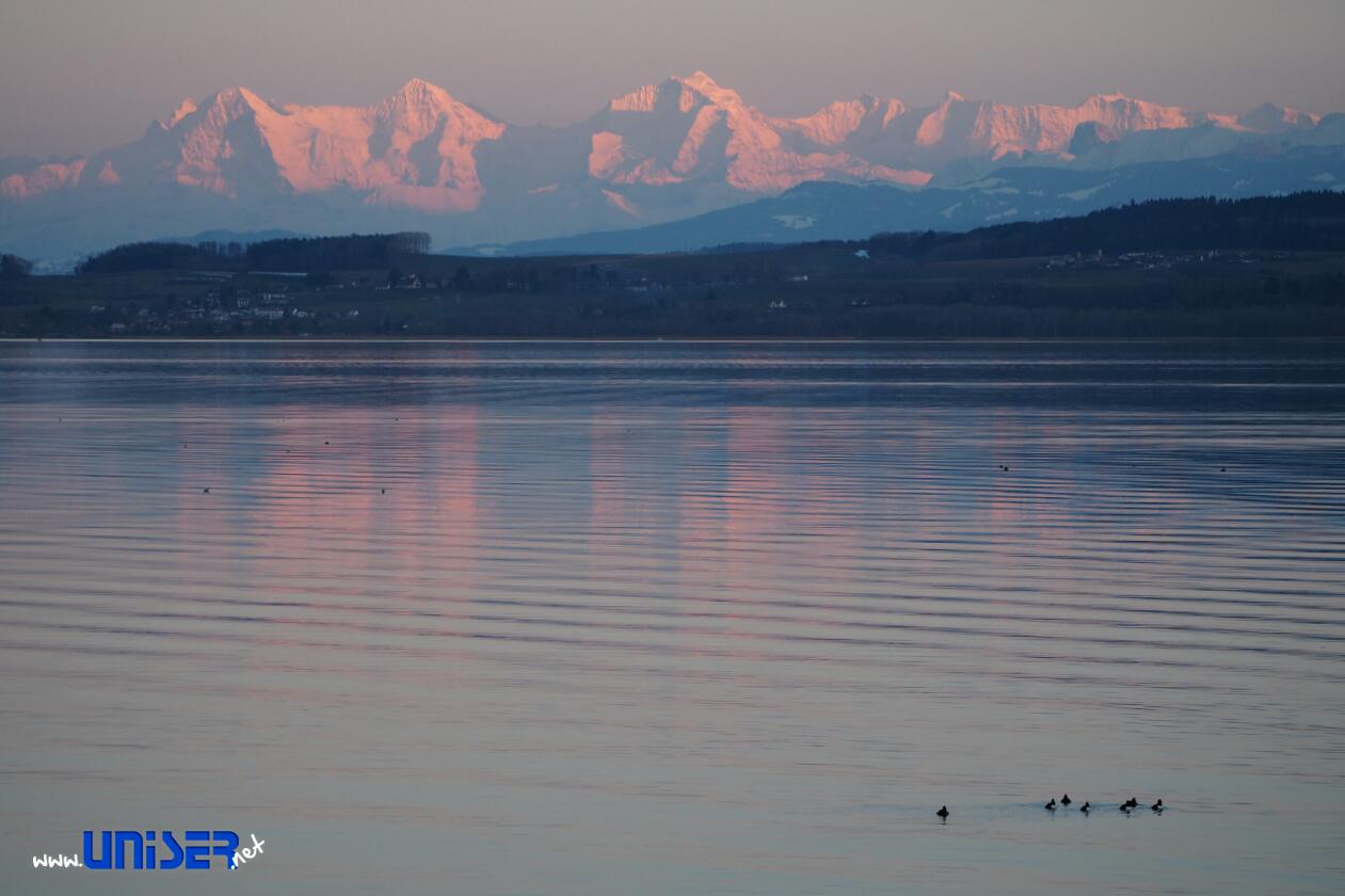 Il lago di Neuchâtel e le Alpi